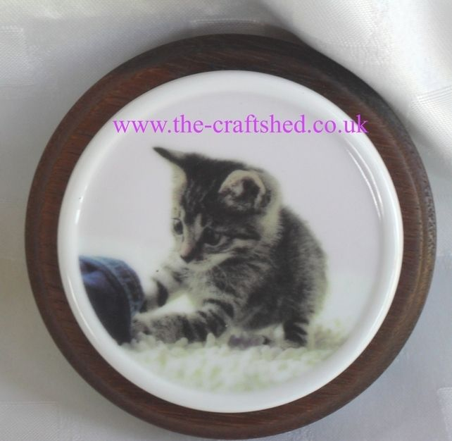 Cuteness Overload! CERAMIC KITTEN PLAQUE on TEAK (wood) PLINTH with BAIZE BASE £5.99