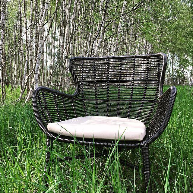 Krzesło Katya #noonu #mebleogrodowe #ogród #ogrod #taras #las #brzoza #birch #gardenfurniture #wiosna #spring