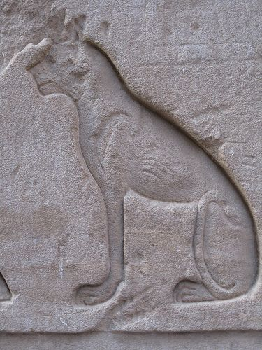 Ancient Egyptian carving of cat Bastet. Outer wall of the Temple of Horus at Edfu, Egypt. (by hewy)