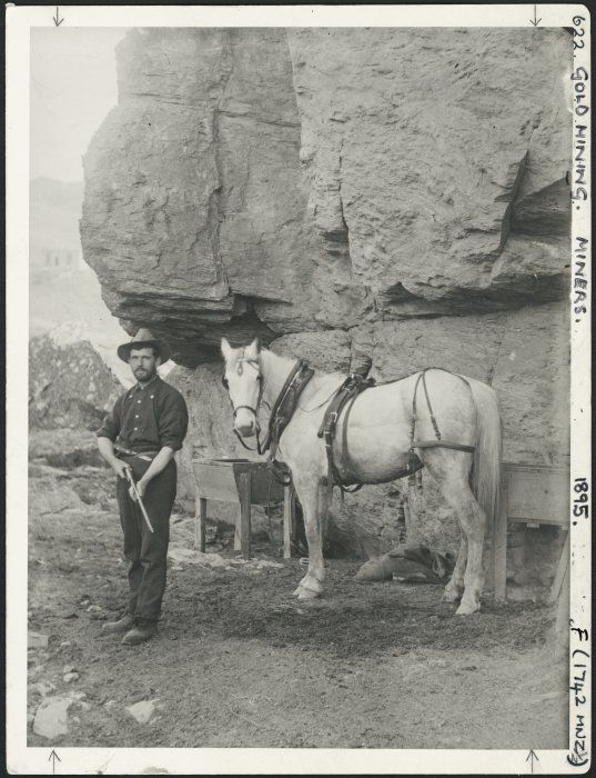 miner and horse