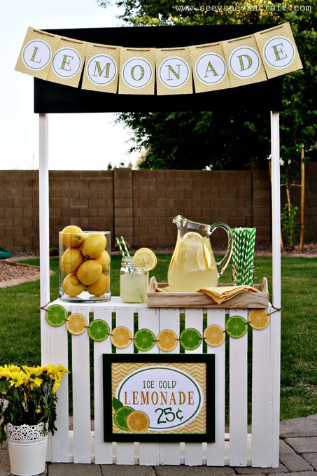 DIY Crate Lemonade Stand for Kids {Think of all the other things it could become too!  Pet Shop, Florist, Restaurant, Puppet Stage, the ideas are endless! } So cute @See Vanessa Craft
