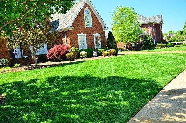 How Long Will It Take Grass Seed To Grow Best Home Gear Easy Lawn Mowing Lawn Care Commercial Landscaping
