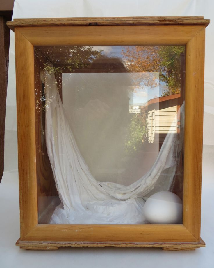 Enclosed Egg Box. Glass, wood, and plaster sculpture by L. Krahn Muenster