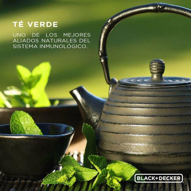 Gracias a su proceso de elaboración el té verde está cargado de antioxidantes y es antibacteriano. ¡Mucho mejor que el café! No debes dudar en tomarlo. #BDTip