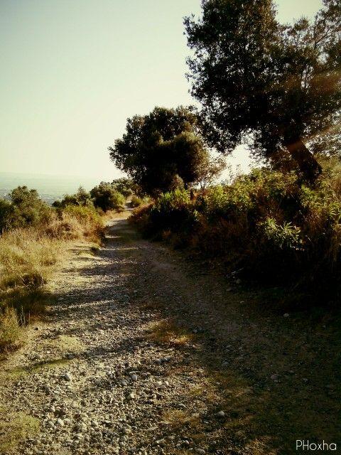 Lekaj - Albania ( hills )