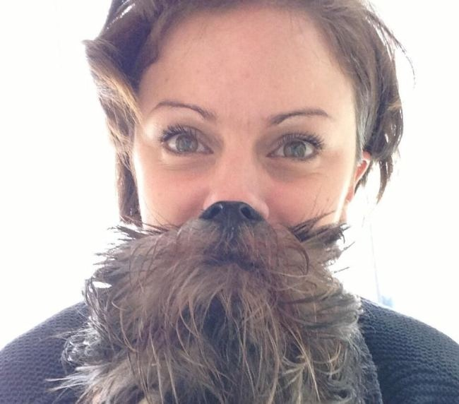 Dog beards