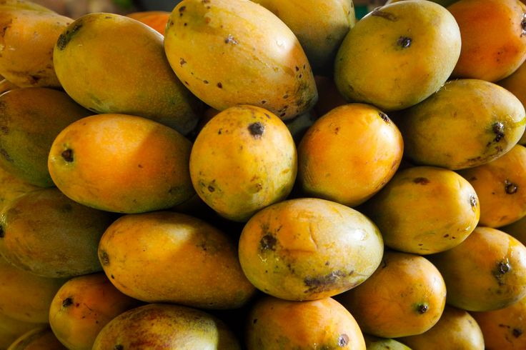 There can be no doubt that Jaffna Mangos are the BEST in the World!