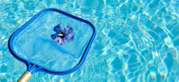 28 Best Solar Breeze Robot Pool Cleaner Images On Pinterest Breeze Robot And Robots