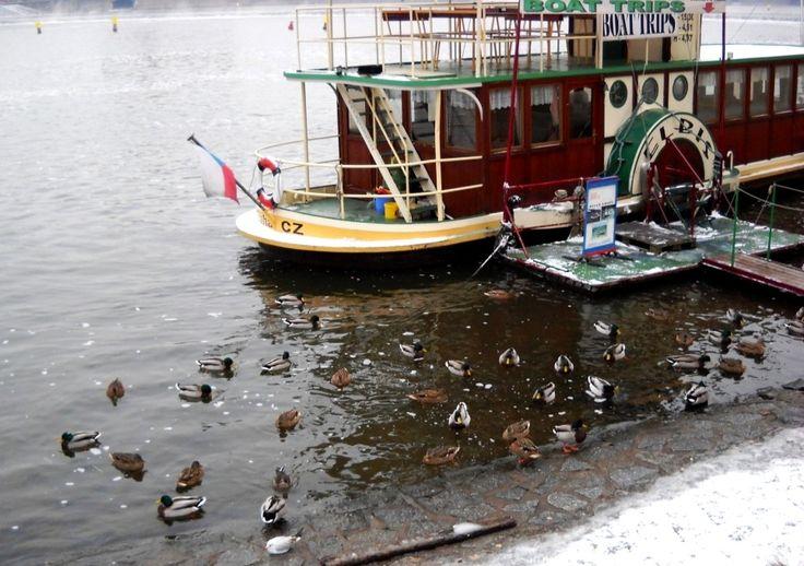 Kotvící parník na zimní Vltavě - Praha - Česko