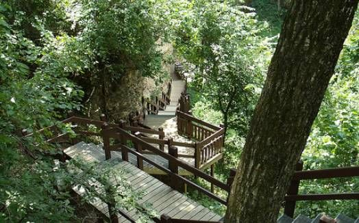 """Grand Gulf State Park in Thayer, MO is known as the """"Little Grand Canyon"""". Created from a collapsed cave system, the """"grand gulf"""" stretches for than a mile between 130  foot high walls. View the gulf from trails along the rim or from the floor; where visitors can walk under a natural bridge that spans 250 feet with a 75 foot high opening. Near the Arkansas border, south of West Plains (4 hours from Millersburg)."""