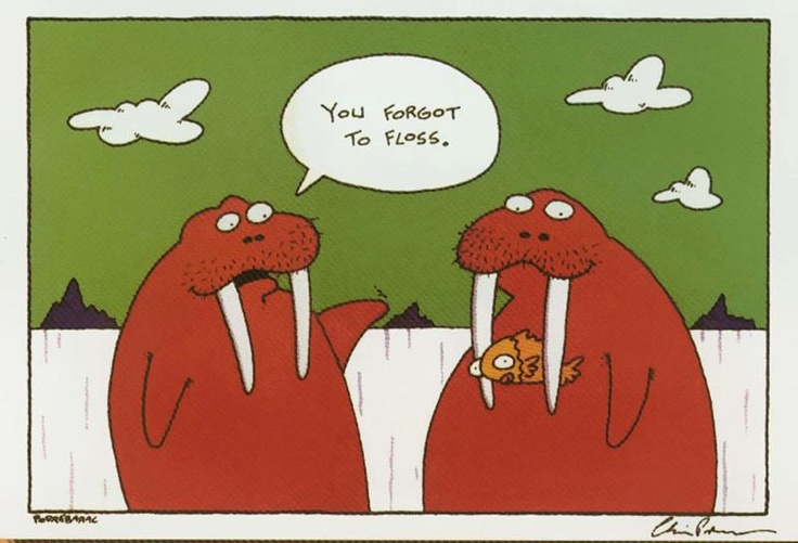 Image result for floss cartoons
