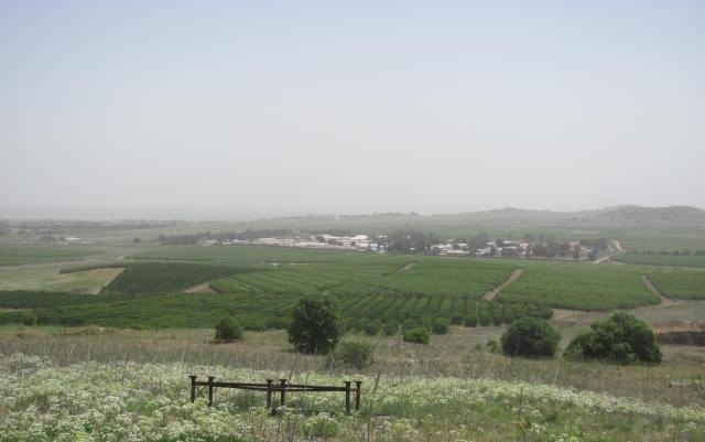 Golan Heights ~ Syria is just beyond the UN Compound