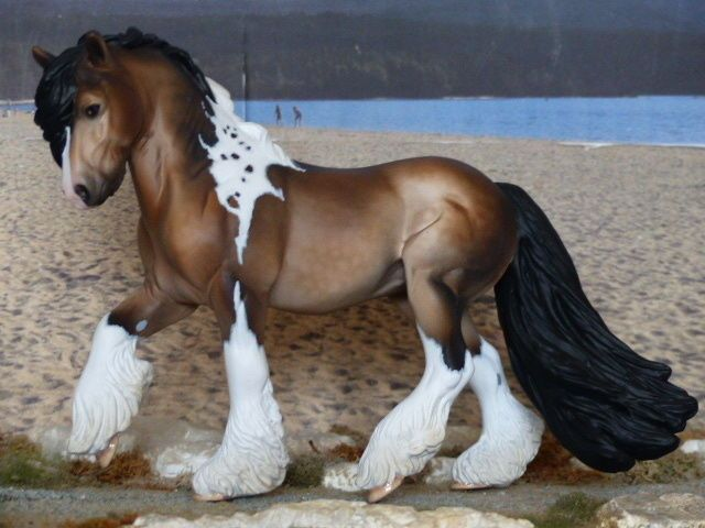 CM TRADITIONALBREYER CARLTONLINA EMMA PAINTED TO A DAPPLED BUCKSKIN PAINT by Deb Brown, England.....(2016/01/09)