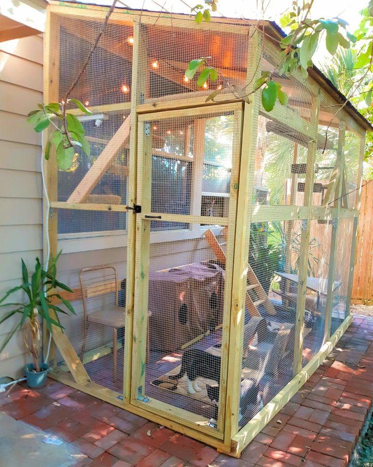 Catio in 2020 outdoor cat enclosure cat enclosure catio