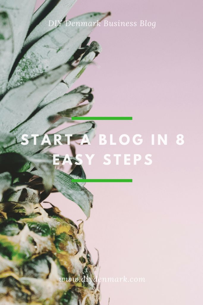 Create a blog in 8 easy steps | DIYDenmark Business Blog This quick guide will show you, how you can easily setup your very own website or blog AND how to make money online. Follow each step and you can have your new website up and running within the next hour! #onlinebusiness #makemoneyonline #entrepreneur #createablog