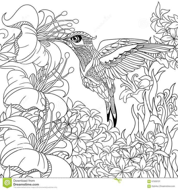 21 best Coloring Book images on