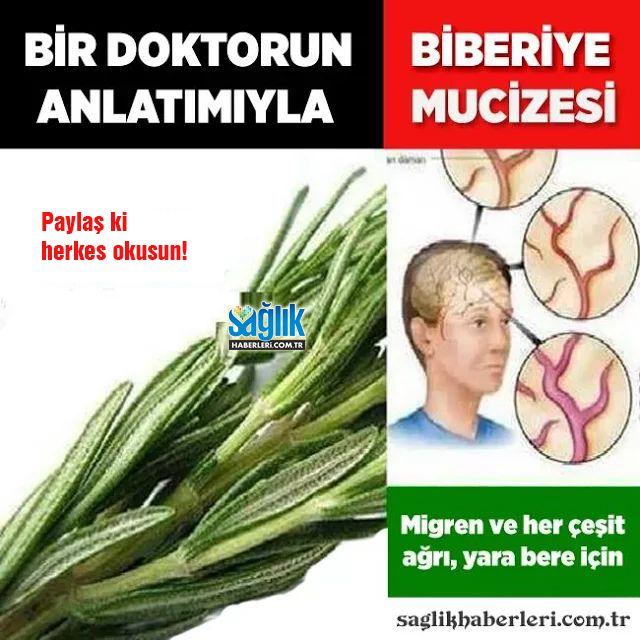 """Bir doktorun anlatımıyla """"Biberiye mucizesi"""" Mutlaka okuyun! Detay İçin Tıkla ► http://www.saglikhaberleri.com.tr/sifali-bitkiler/biberiye-mucizesine-inanmiyorsaniz-denemesi-bedava-h103704.html"""