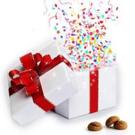 Woohoo! De Sint is weer in het land! Bestel nu op MegaGadgets.nl gauw de Surprise Boxen voor jongens en meisjes!