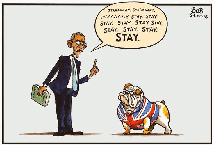 """Teddy Edward en Twitter: """"#brexit #Obama #Britishbulldog This was enough to make my mind up https://t.co/2SQCQ6p35N"""""""