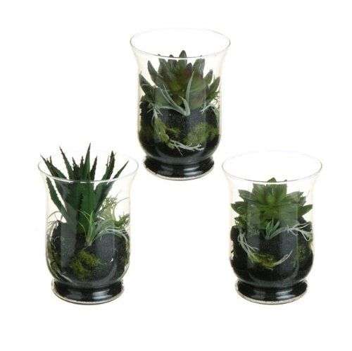 "Set of 3 Southwestern Mixed Artificial Cactus and Succulent Plant Terrariums 6"" -- Check this awesome product by going to the link at the image."