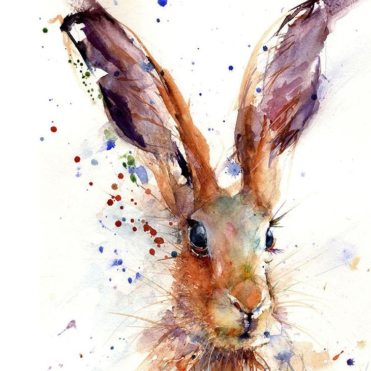 HELEN ROSE Limited Print of my HARE animal art watercolour 388
