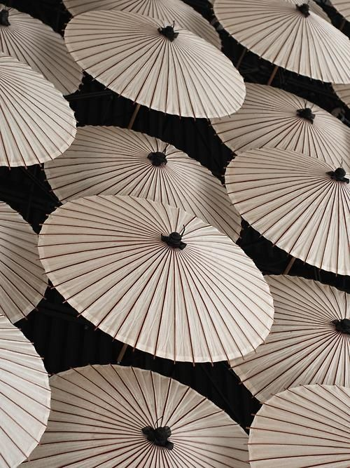 Martial Arts ability of the Secret Ninjas... The White Parasol