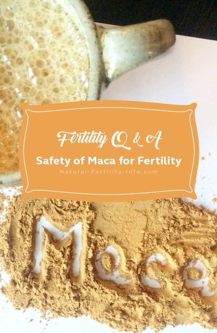 The medicinal herb Maca (Lepidium meyenii) naturally supports fertility in a variety of ways, it provides great nourishment to the body and is a fertility superfood that we feel can benefit most men and women.     #maca #herbs #herbsforfertility #macasuperfood #naturalfertility #NaturalfertilityInfo #NaturalFertilityShop