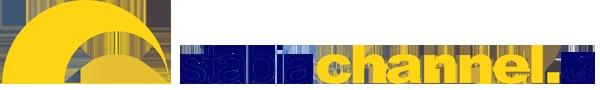 Si sono spesi meno soldi per andare sulla luna - denunciano il commissario regionale campano dei Verdi Ecologisti Francesco Emilio Borrelli assieme allo speaker radiofonico Gianni Simioli organizzatori della iniziativa con l' associazione Assud- che per realizzare la Salerno Reggio Calabria che dopo 50 anni di lavori non è ancora terminata.