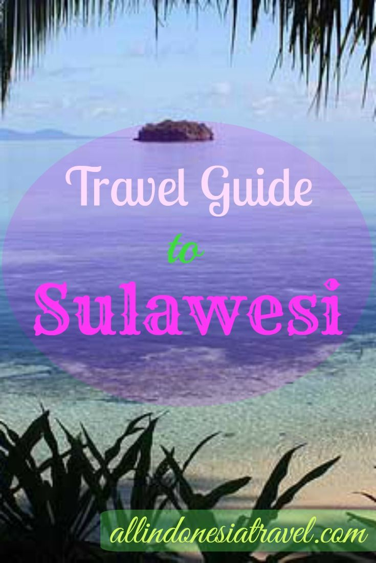 Your travel guide to Sulawesi, one of the four Greater Sunda Islands of Indonesia, being enormous in size and population. It is formerly known as Celebes to the Portuguese.The shape of this island is unique and easily recognized by many and aptly so as the place is full of unique cultures, unexplored land, mountains and even the sea. | http://allindonesiatravel.com