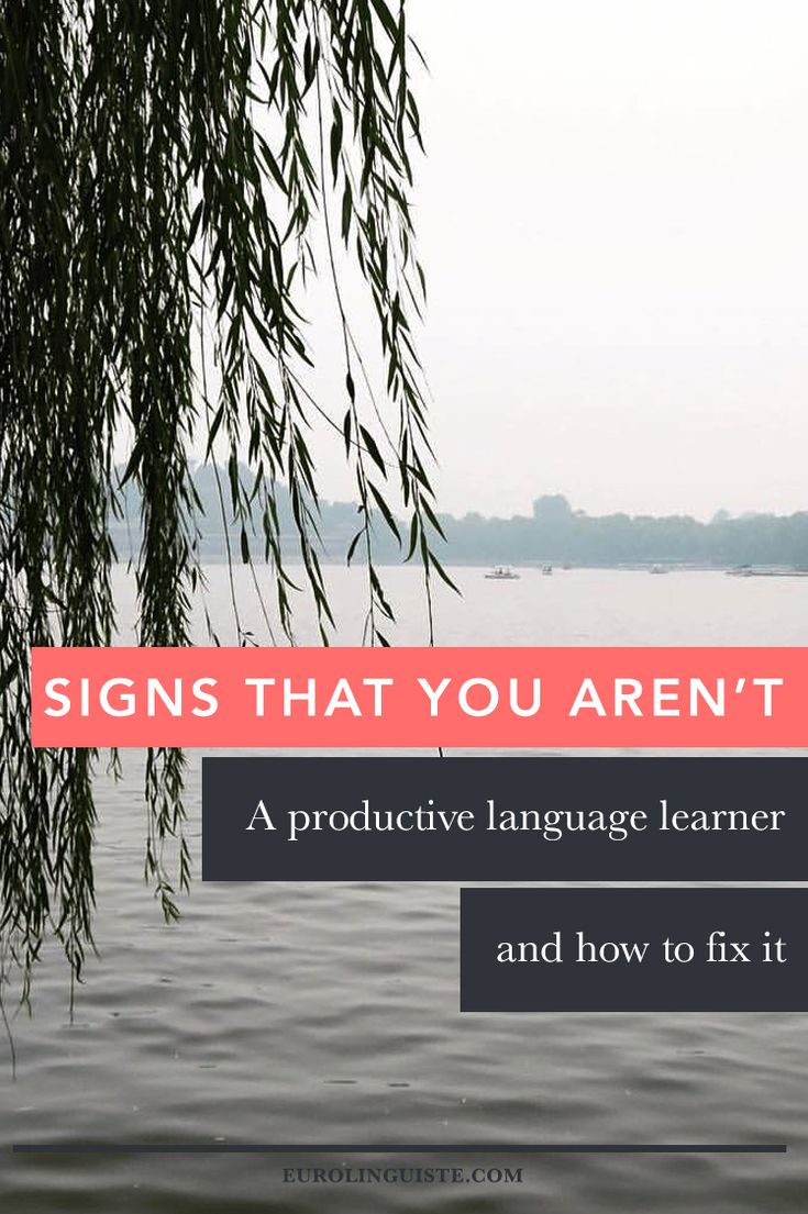 You might not be productive in your language learning if… 1. You aren't studying between language lessons. If you're showing up to your lessons, great job. Still, if you're not doing any stud…