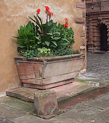 Like how the container is up on a pedestal showy for Italian courtyard garden design ideas