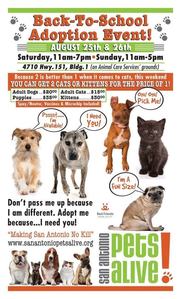 Pet Adoption Event This Weekend In San Antonio Tx Pet Adoption Event Animal Shelter Volunteer Pet Event
