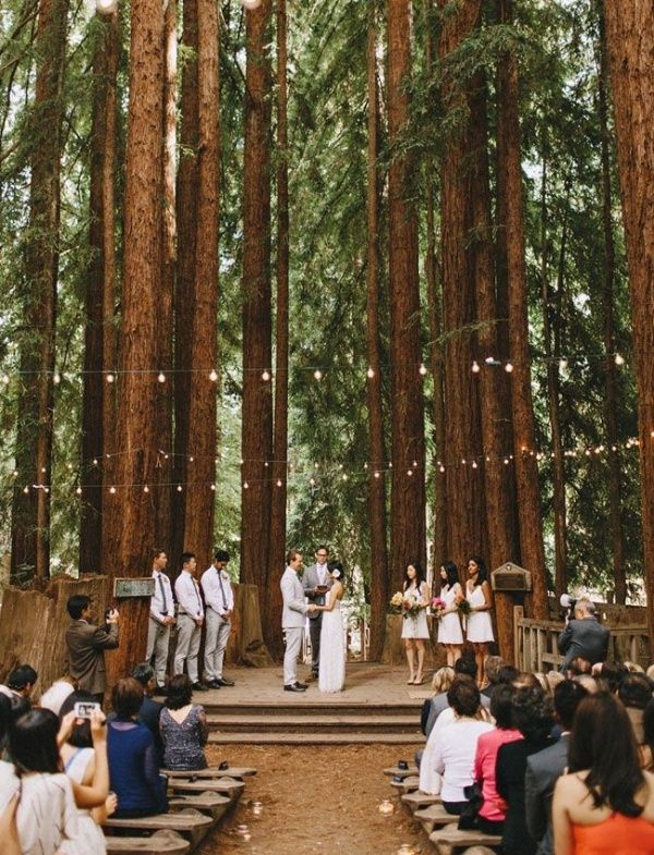 Gorgeous redwood forest wedding venue