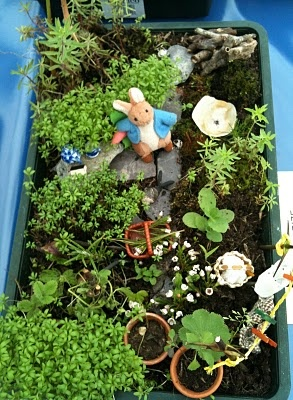 17 best images about jake 39 s tray garden ideas on pinterest for Tray garden designs