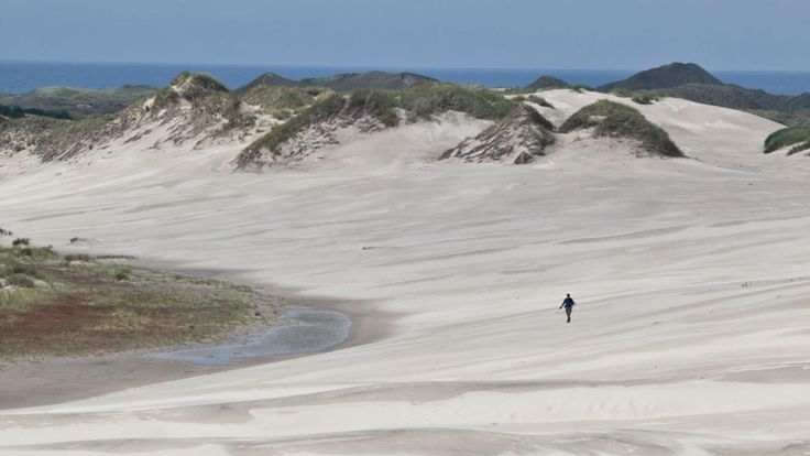 The open space and dunes of West Jutland #beaches #denmark #seaside #northsea