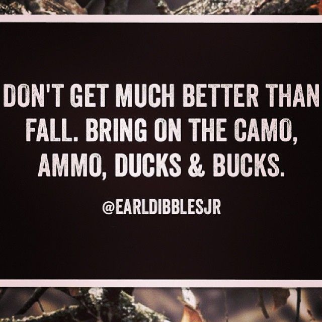 Don't get much better than fall. Bring on the camo, ammo. ducks and bucks