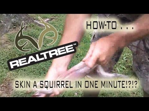 How to Skin a Squirrel in 1 Minute | Small Game Hunting | Realtree