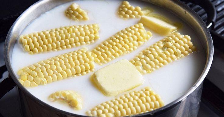 Celé leto sme snívali o chuti mladej kukurice so soľou, maslom a plátkom obľúbeného syra. Nakoniec nás čakalo sklamanie v podobe príliš zrelej alebo naopak, nedozretej kukurice, bez obvyklej sladkastej chuti. Nakoniec sa však ukázalo, že chyba bola na našej strane a kukurice sme mali spracovať o niečo skôr. Kukurica by mala byť čo najčerstvejšia – čas sa začína počítať