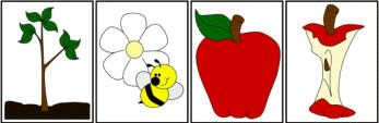 """""""life of an apple"""" story sequencing worksheets"""