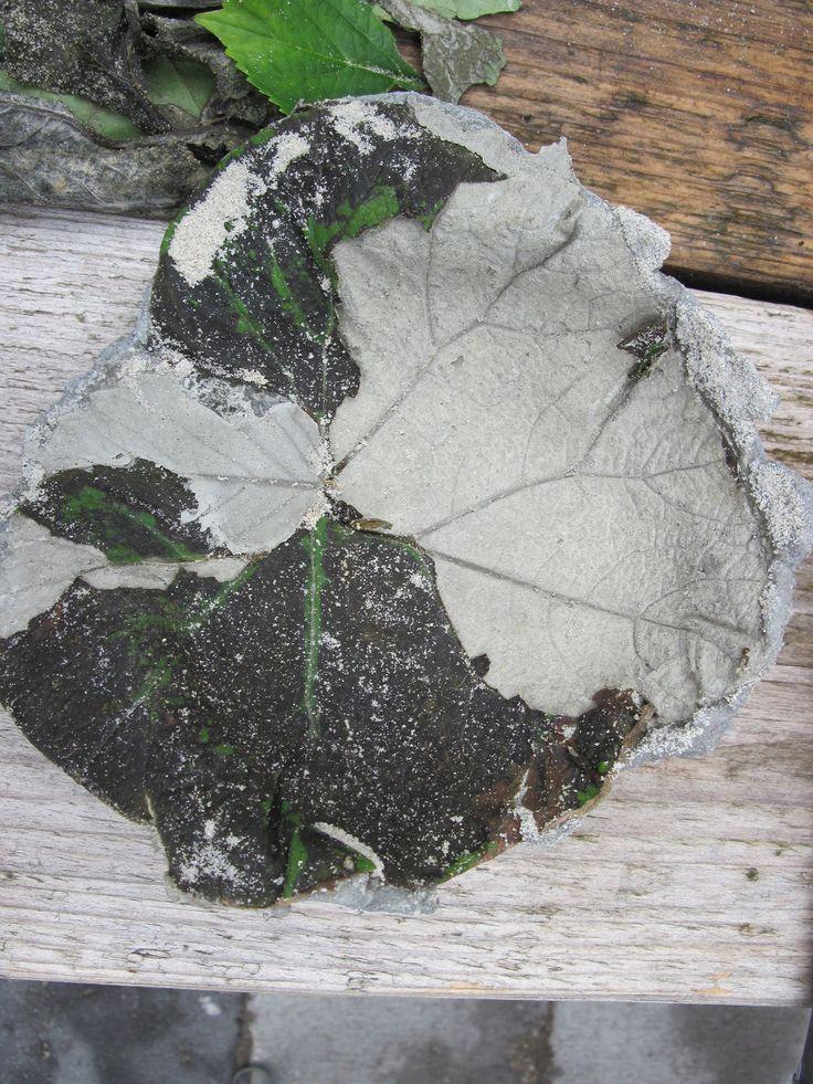 een blad afdrukken in zand cement