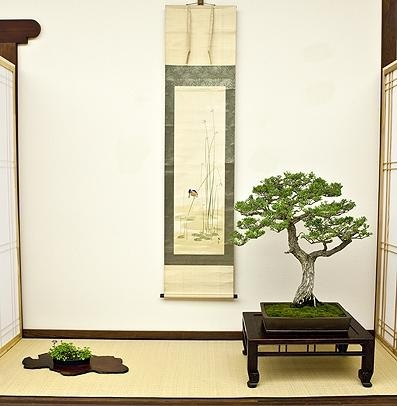 On April 27th, the Clark Center for Japanese Art & Culture will organize the fourth KAZARI: Bonsai Display Competition. The competition focuses on creating a harmonious display of hanging scroll, bonsai tree, and an adjacent plant or stone to display in a tokonoma alcove.
