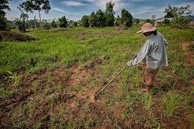 caracterizo-lencho: Lencho es un granjero pobre tonto.