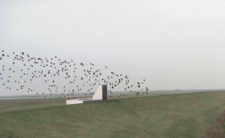 Architecture Landscape Natural daylight - Pavilion 7 Rhythms Birds - Diploma Project by Diana Lindboe