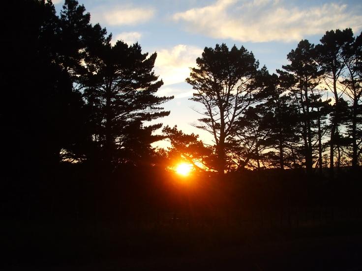 Sunset: Awhitu Peninsula, NZ.