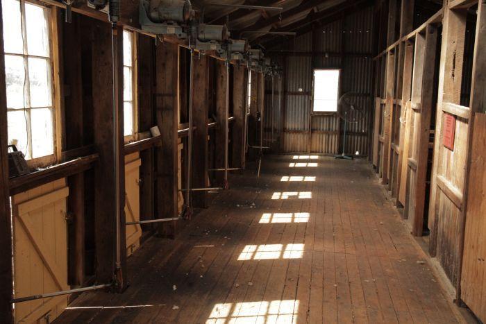 Restored shearing shed