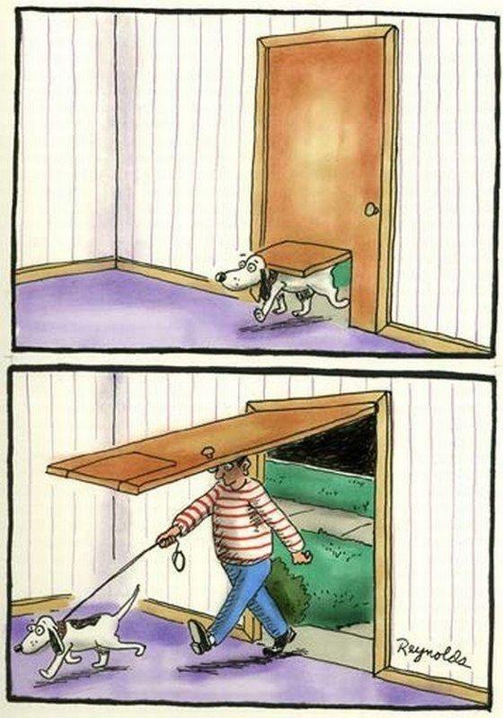 Dog door cartoon. そうやんな