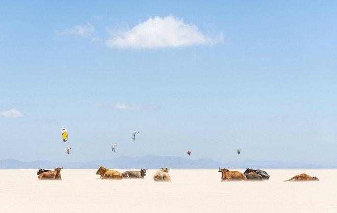 Pereirga.gr - NG: Οι καλύτερες ταξιδιωτικές φωτογραφίες του 2013
