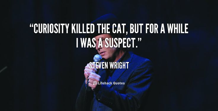"""Curiosity killed the cat, but for a while I was a suspect."" - Steven Wright #quote #lifehack #stevenwright"