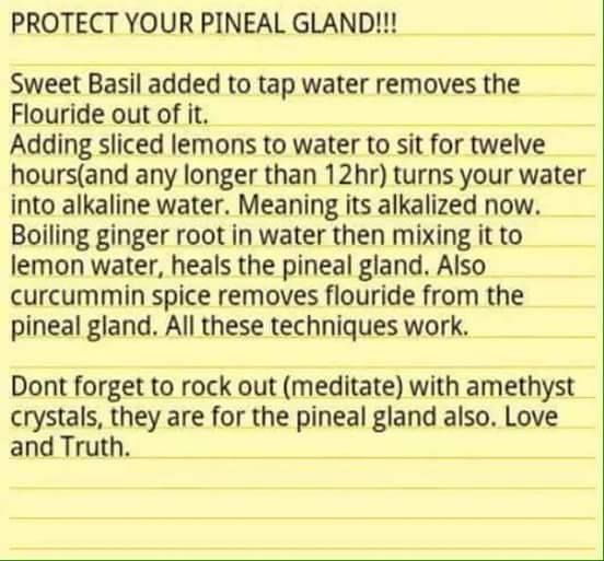 detox pineal gland naturally                                                                                                                                                     More