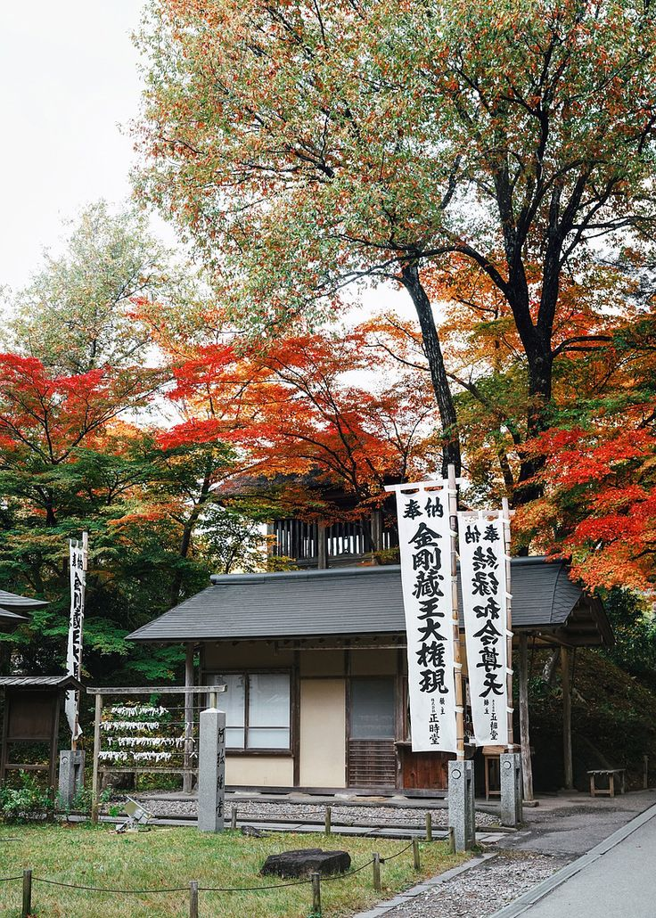 The Japan Journal: Autumn Diary in Tohoku | blog.nicolinepatricia.com